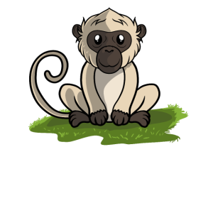 Affe Äffchen