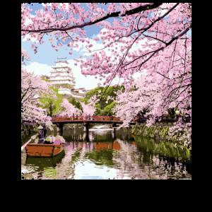 Japanischer Kirschblüten-rosa Blumenbaum Japan Asi