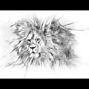 König der Herr der wilden Tiere