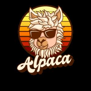 Alpaka Kamel Vintage Pako Lama Cool Hipster Lustig