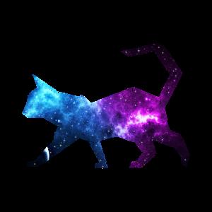 Galaxy Cat - Universum Katze
