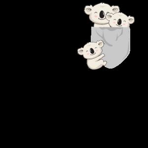 Süße Kawaii Baby Koalas spielen in der Tasche