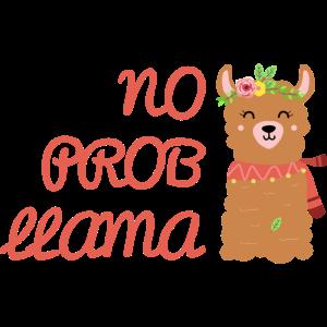 Kein ProbLlama