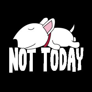 Faulenzer Not Today Bullterrier Lustiger Hund
