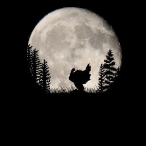 Romantischer Truthahn bei Nacht im Vollmond