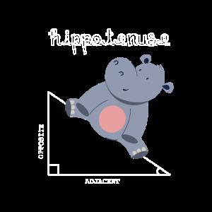 Hippotenuse - für Mathelehrer und Mathematiker