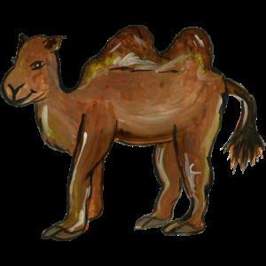lustiges Kamel