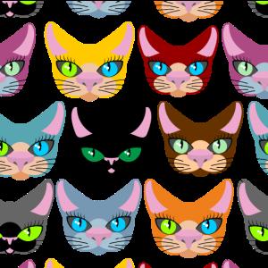 Maske Katze Geschenkidee für verrückte Katzendame
