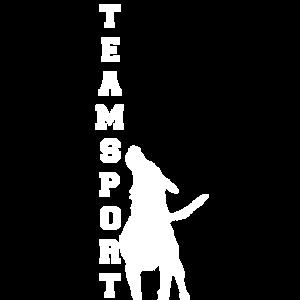 Teamsport Design