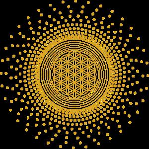 Blume des Lebens mit Punkten | Heilige Geometrie