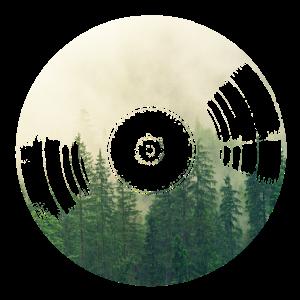 Vinyl und Bild