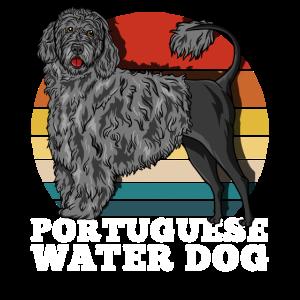 Portugiesischer Wasserhund Retro