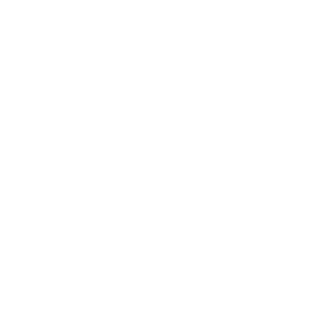 zwei Katzen lieben