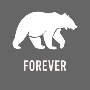Diseño Oso Forever