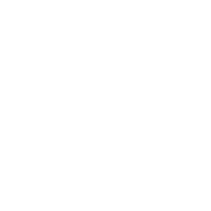 Viking - World Tour - Vikings - Wikinger