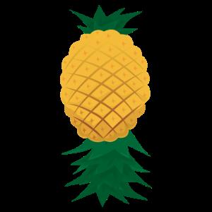 Upside Down Ananas Fruchtliebhaber Geschenkidee