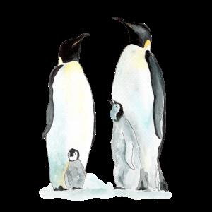 Pinguin Familie zwei Kinder