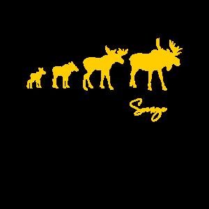 Elch Elchfamilie Schweden Sverige