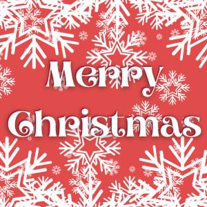 Mundschutz Merry Christmas