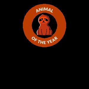 Animal of the Year Tier des Jahres Fautier Sloth