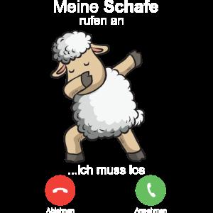 Schafe rufen an Landwirt Schäfer Schaf Bauer