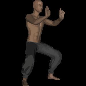 Karate Kyokushinkai Fans