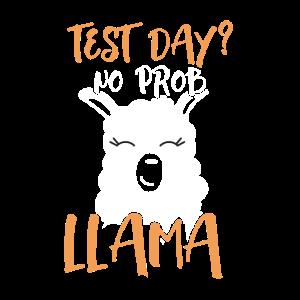 Testtag Kein Prob Lama