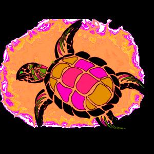 Rosa und orange Schildkröte