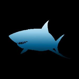 Shark shape ocean blue