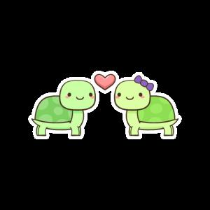 Liebe Schildkröte
