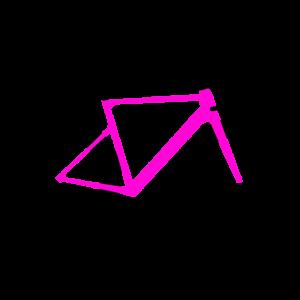 Rennrad pink