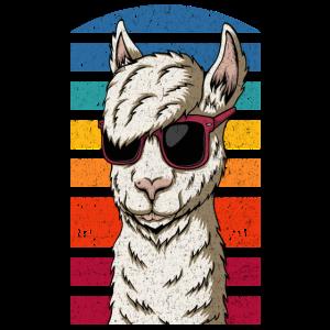 Witziges Lama mit Sonnenbrille