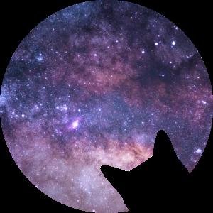 Weltraum Katze starrt ins All