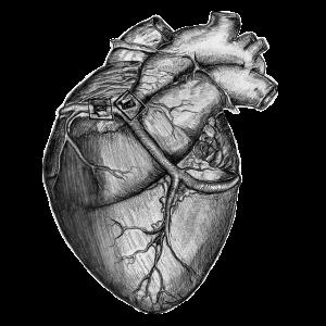 Sticker Herz Aufkleber Zeichnung Schwarz