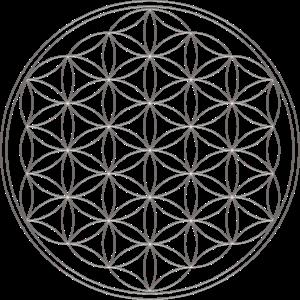 Blume des Lebens, Flower of life, Silber, Schutz