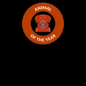 Animal of the Year Tier des Jahres Hund Hunde Dog