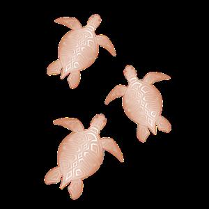 Rose Gold Schildkröten