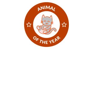 Animal of the Year Tier des Jahres Katze Kater