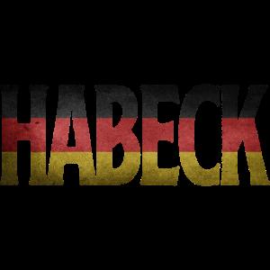 Habeck 2021 Kanzler Grüne Wahl Politiker Kandidat