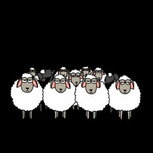 Du bist niemals alleine! schwarzes Schaf