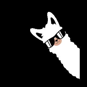 Lustiges Alpaka, Lama mit Sonnenbrille