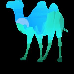 Kamel Wüste Afrika Dromedar