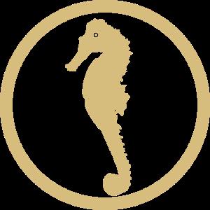 Seepferdchen Abzeichen gold