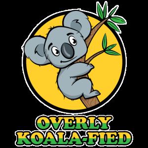 Koala aus Australien