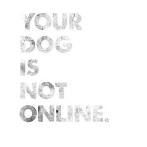 Your Dog Is Not Online Hunde Spruch Denglisch