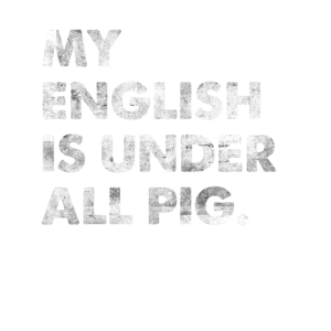 My English Is Under All Pig Denglisch Spruch