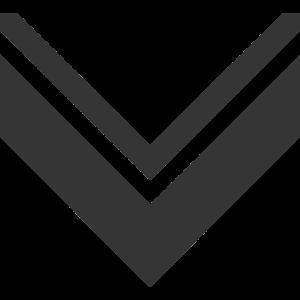 Vanguard Merch