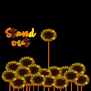Sunflowers,Sonnenblume,auffallen,hervorragen,Sonne