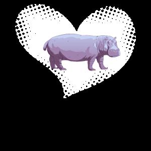 Nilpferd Hippo Nilpferde Hippos Flusspferde Hippos