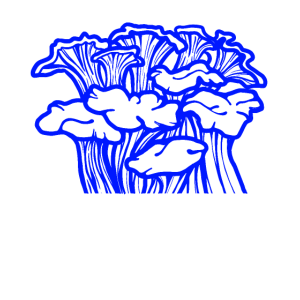 Mushrooms blue
